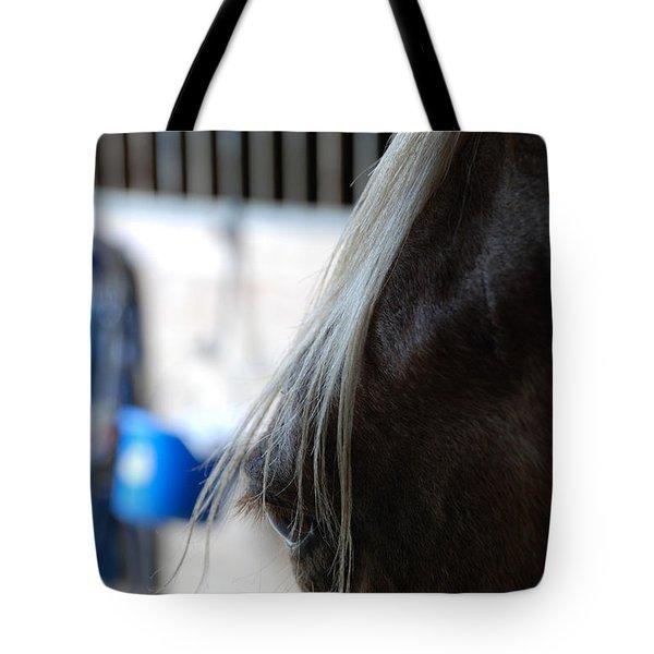 Looking Forward Tote Bag by Jennifer Ancker