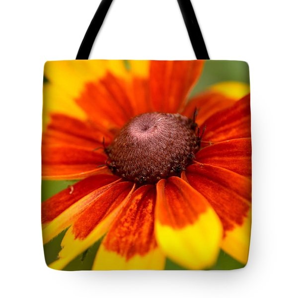 Tote Bag featuring the photograph Looking Susan In The Eye by JD Grimes