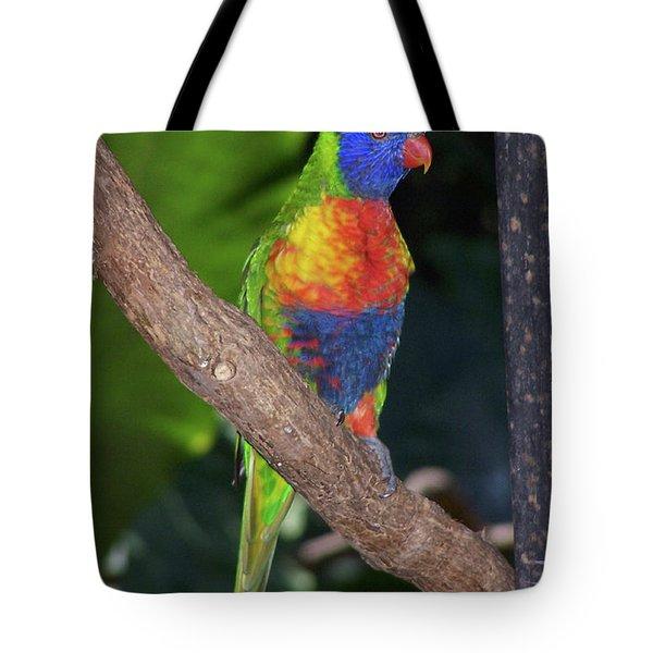 Lorikeet Tote Bag