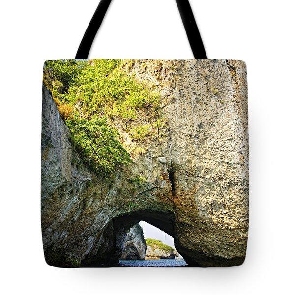 Los Arcos Park In Mexico Tote Bag by Elena Elisseeva