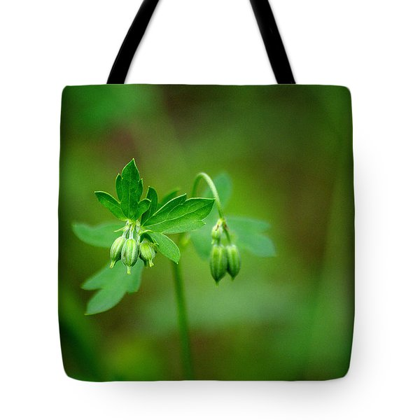 Tote Bag featuring the photograph Lost But Not Forgotten by Vicki Pelham