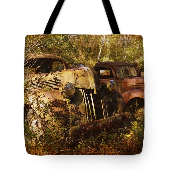 Lost In Time Tote Bag by Carla Parris