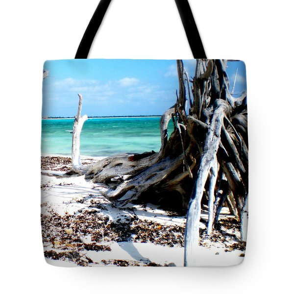 Cozumel Mexico  Paradise On Earth Tote Bag