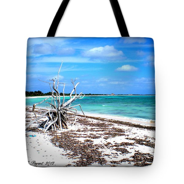 Tote Bag featuring the photograph Lost Paradise The Sequel 2 by Danielle  Parent