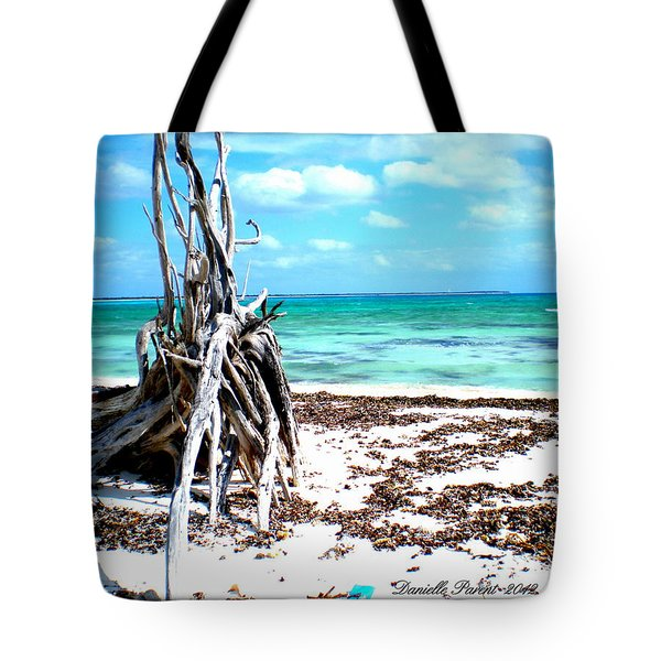 Tote Bag featuring the photograph Lost Paradise The Sequel 3 by Danielle  Parent