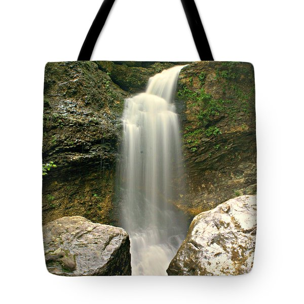 Lost Valleyh Tote Bag by Marty Koch