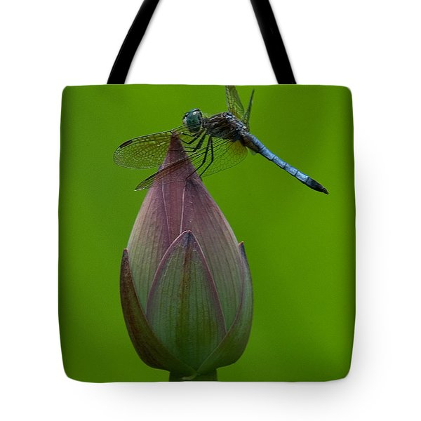 Lotus Bud And Blue Dasher Dragonfly Dl007 Tote Bag