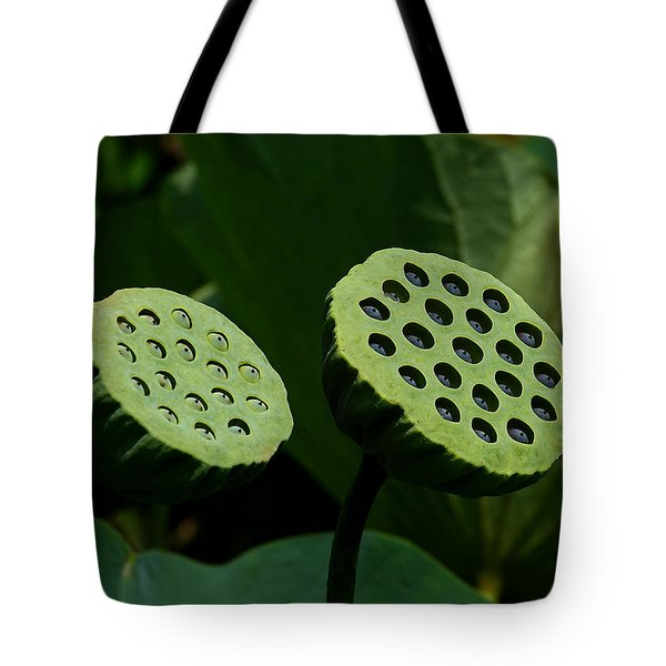 Lotus Capsules-sun Worshipers Dl052 Tote Bag