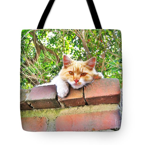Lounge Act Cat Tote Bag