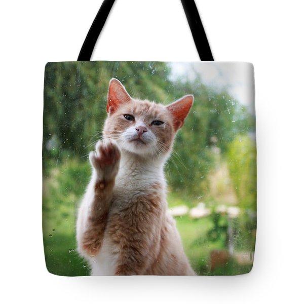 Lovely Cat Tote Bag