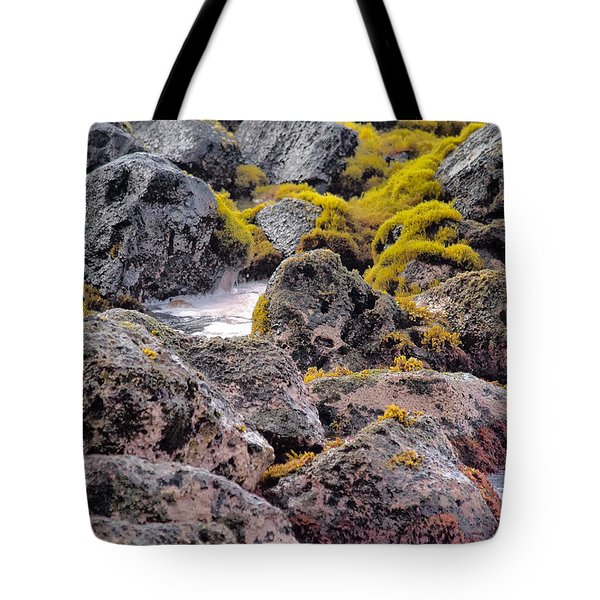 Low Tide Tote Bag by Roger Mullenhour