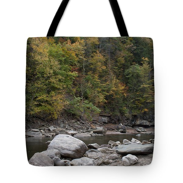 Loyalsock Creek Worlds End State Park Tote Bag