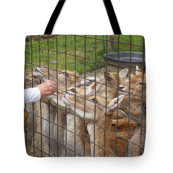Lunchtime Tote Bag by J Jaiam