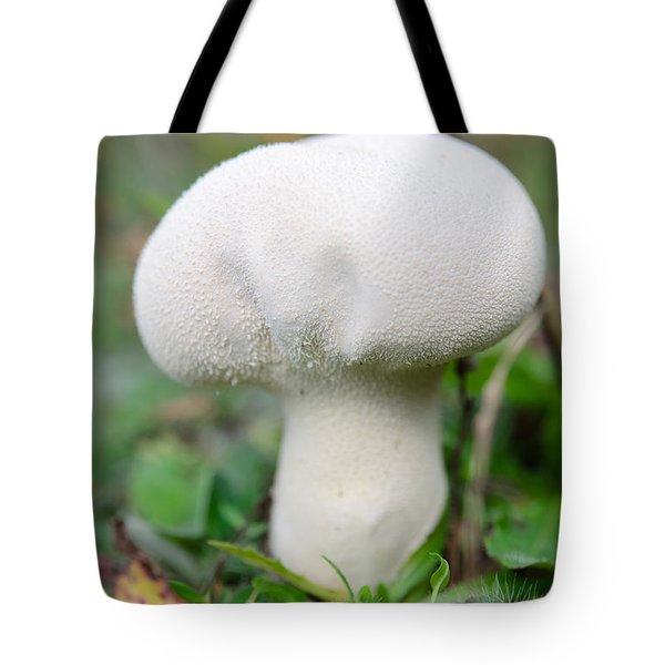 Lycoperdon Tote Bag
