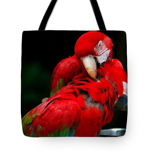 Macaws Tote Bag by Paul Ge