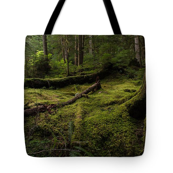 Magical Forest Tote Bag by Mike Reid