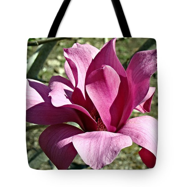 Tote Bag featuring the photograph Magnolia Blossum by Nick Kloepping