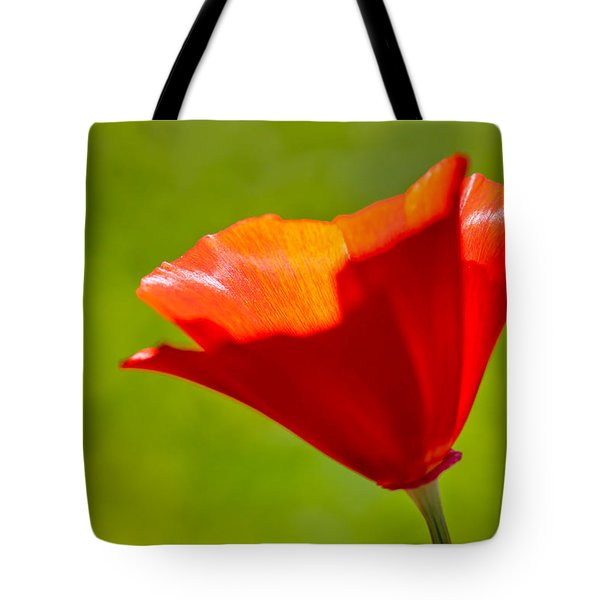 Mahogany California Poppy IIi Tote Bag by Heidi Smith