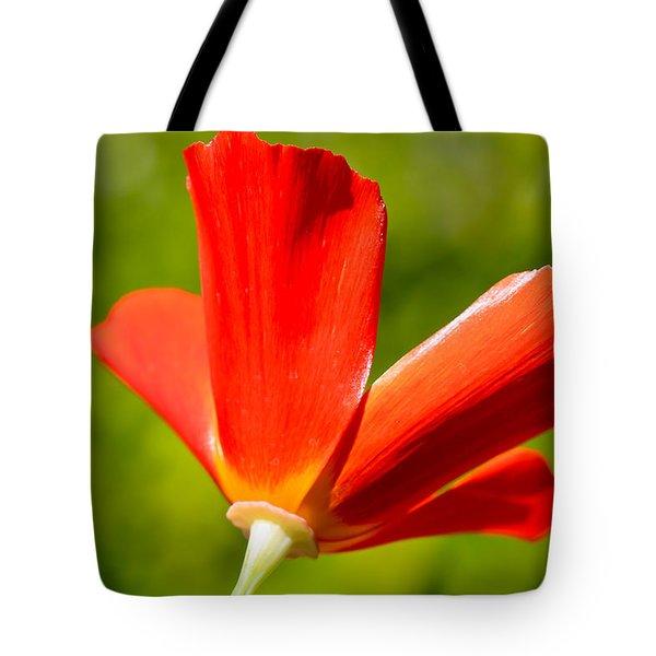 Mahogany California Poppy Iv Tote Bag by Heidi Smith