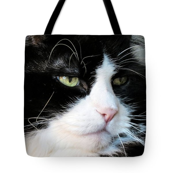 Maine Coon Face Tote Bag by Art Dingo
