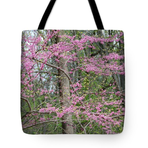 Majestic Tote Bag by Aimee L Maher Photography and Art Visit ALMGallerydotcom