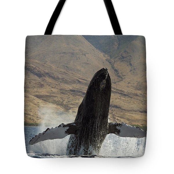 Majestic Breaching Whale Tote Bag by Dave Fleetham