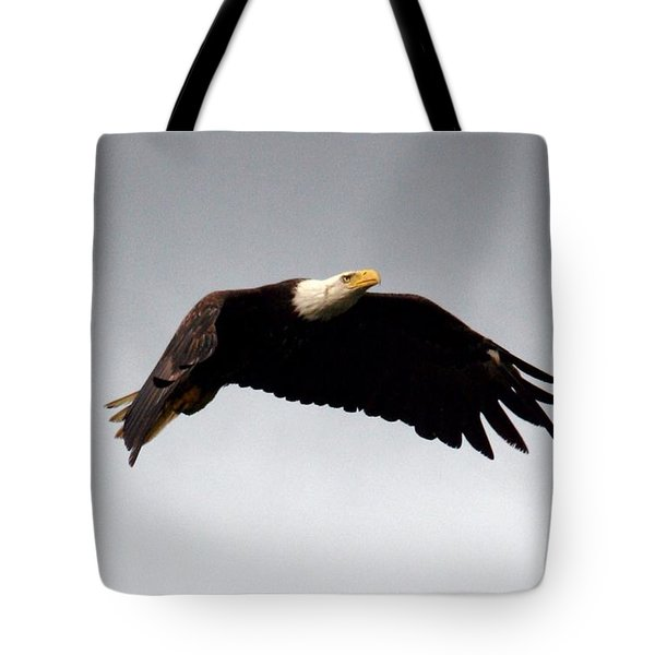 Tote Bag featuring the photograph Majestic Flight by Polly Peacock