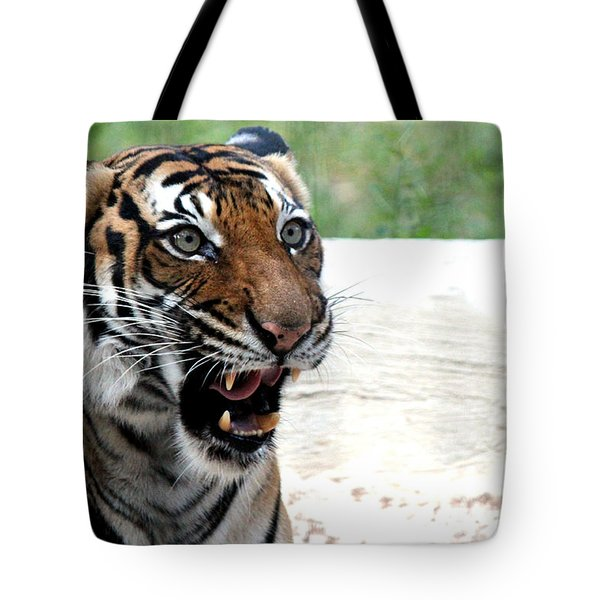 Tote Bag featuring the photograph Make My Day by Kathy  White
