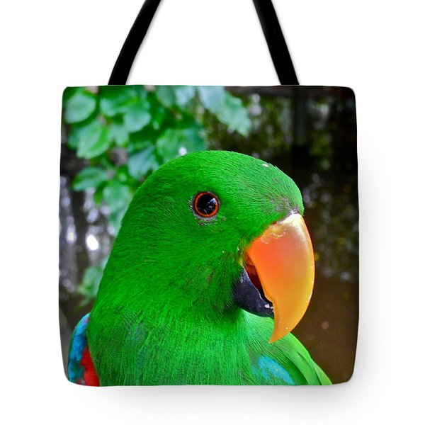 Male Eclectus Parrot II Tote Bag by Kirsten Giving