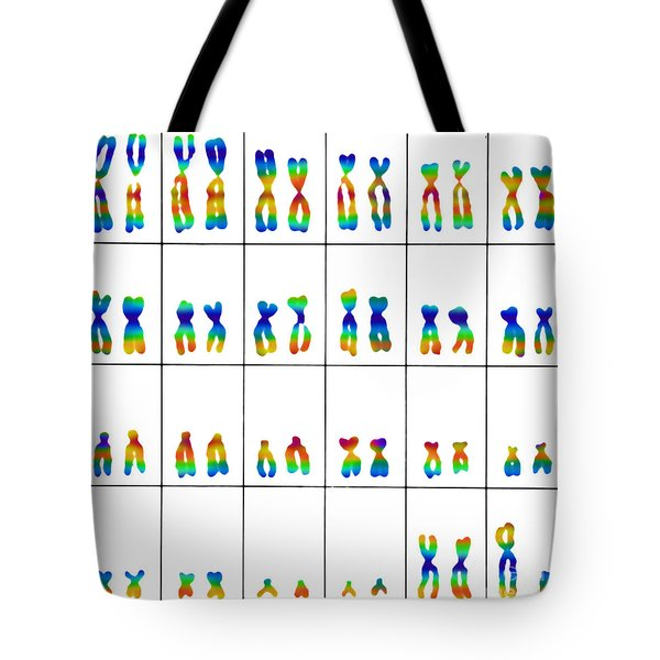 Male Karyotype Tote Bag by Omikron