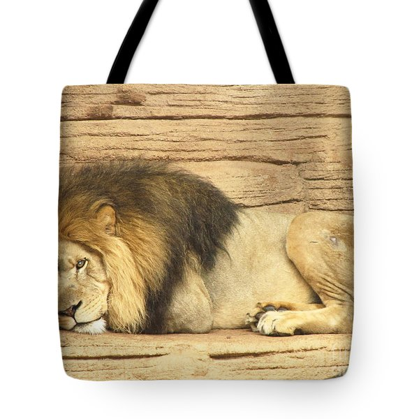 Male Lion Resting Tote Bag