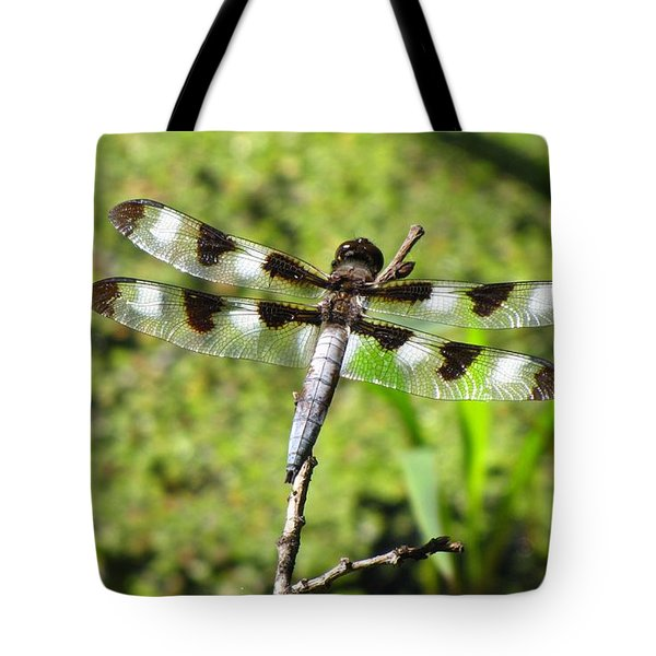 Tote Bag featuring the photograph Male Twelve-spotted Dragonfly by Maciek Froncisz
