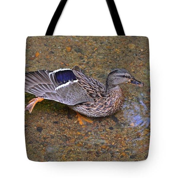 Mallard Hen Arabesque Tote Bag by Sandi OReilly