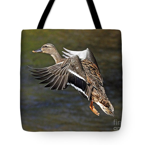 Mallard Landing Tote Bag by Rodney Campbell