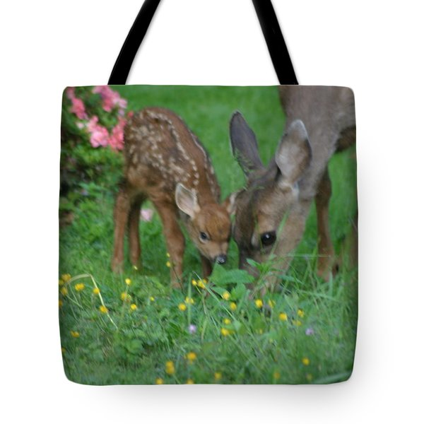 Mama And Spotted Baby Fawn Tote Bag by Kym Backland