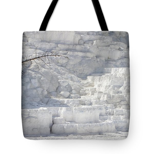 Tote Bag featuring the photograph Mammoth Trees by J L Woody Wooden