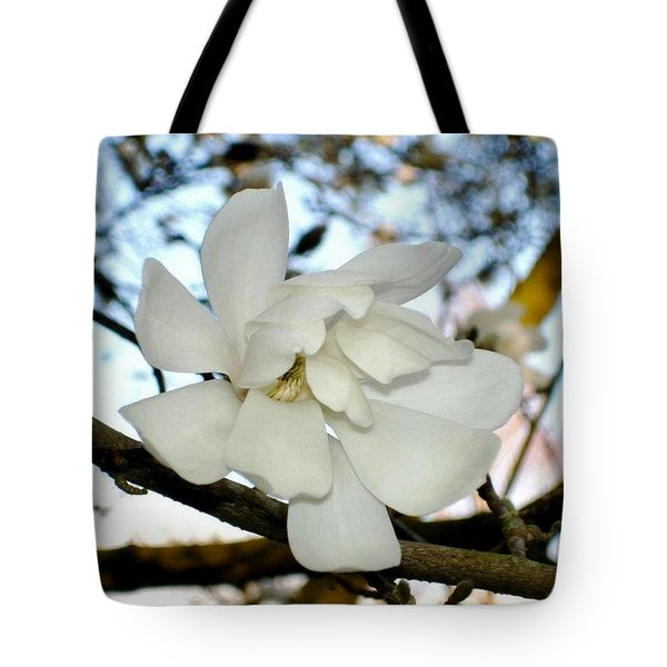 Tote Bag featuring the photograph Mangolia  by Katy Mei