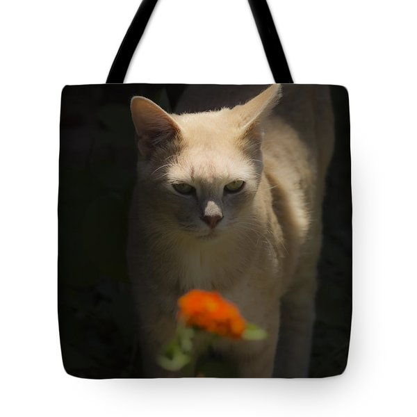 Many Moods Of Kitty Tote Bag