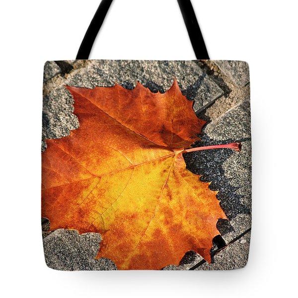 Maple Leaf In Fall Tote Bag by Carolyn Marshall