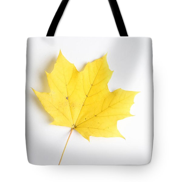 Maple Leaf Tote Bag by Photo Researchers