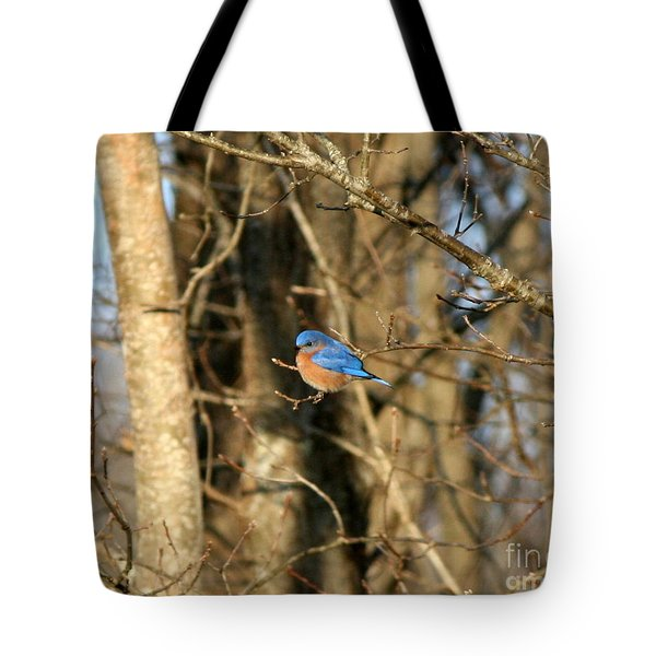 March Bluebird Tote Bag by Neal Eslinger