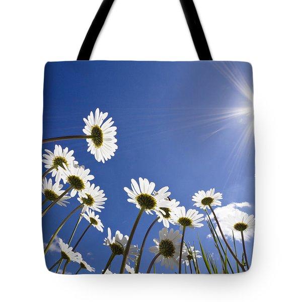 Marguerite Leucanthemum Vulgare Tote Bag by Konrad Wothe