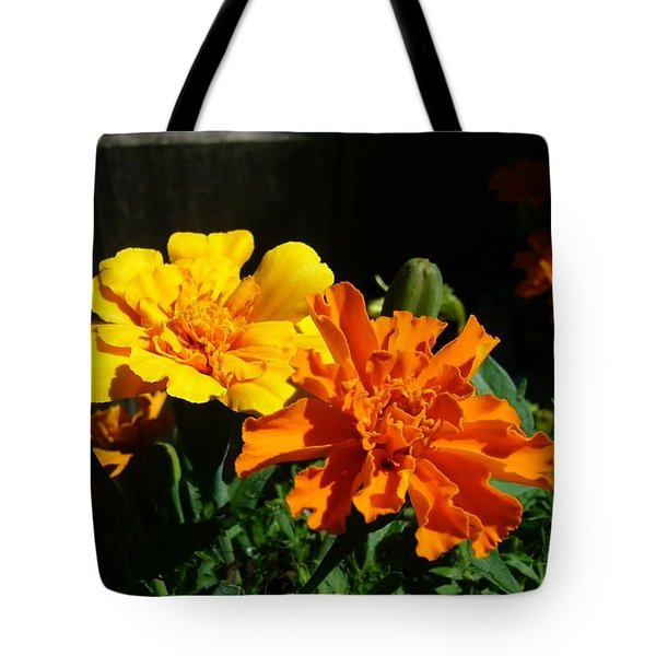 Tote Bag featuring the photograph Marigold Morning Glory by Jim Sauchyn