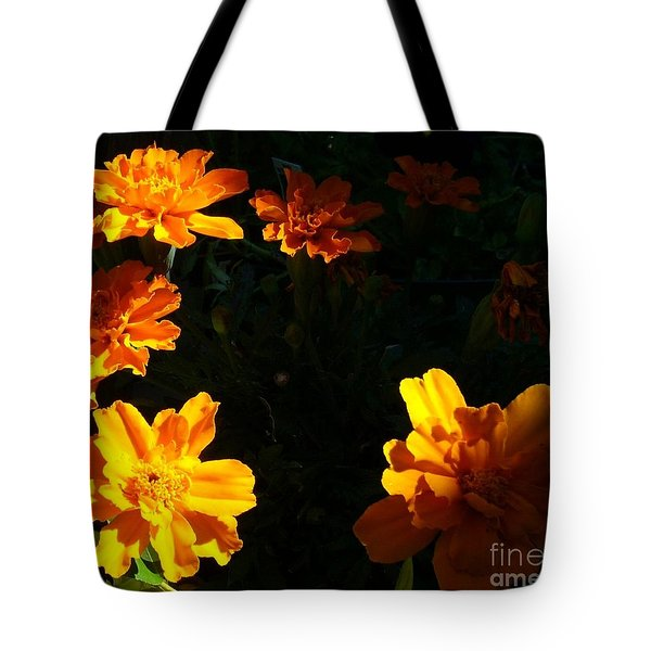 Tote Bag featuring the photograph Marigold Sunrise by Jim Sauchyn