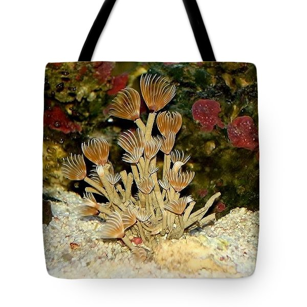Tote Bag featuring the photograph Marine Dream by Katy Mei