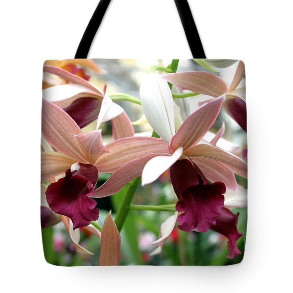 Tote Bag featuring the photograph Maroon Bloom by Debbie Hart