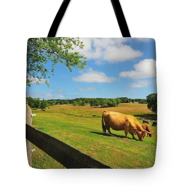 Massachusetts Farm Tote Bag by Catherine Reusch Daley