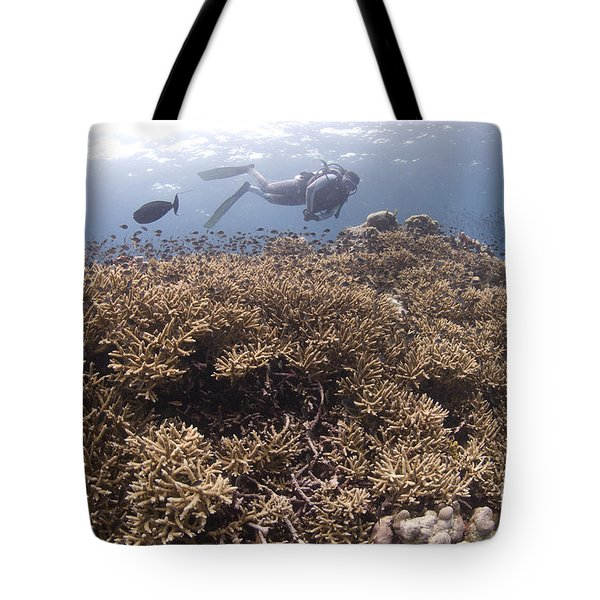 Masses Of Staghorn Coral, Papua New Tote Bag by Steve Jones