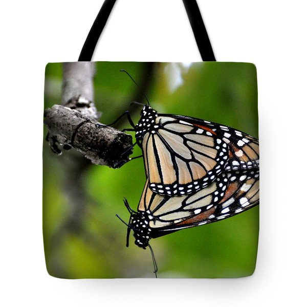 Mating Monarchs Tote Bag by Marty Koch