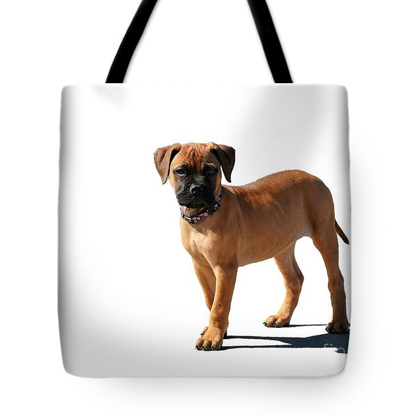 Me And My Shadow 2 Tote Bag by Dale   Ford